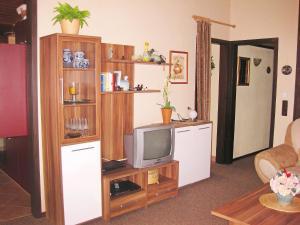 TV/Unterhaltungsangebot in der Unterkunft Holiday Home Ferienpark Ronshausen-3