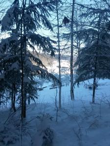 Ferienwohnung Am Kapellenäcker im Winter