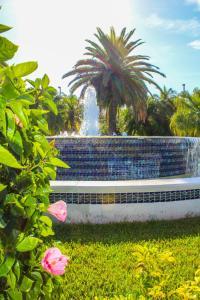 A garden outside The Resort on Cocoa Beach, a VRI resort