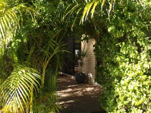 A garden outside Baudins of Busselton Bed and Breakfast