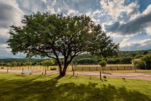 Un jardín fuera de El 44 Reserva Natural de Tiempo Libre
