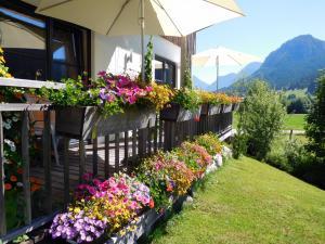 Ein Garten an der Unterkunft Appartements gosaukamm.com