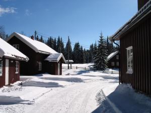 Kleivstua during the winter
