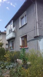 The facade or entrance of Edelvays House