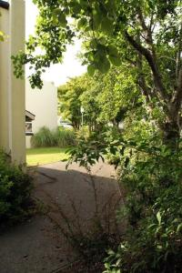 A garden outside Cottage 504 - Carraroe
