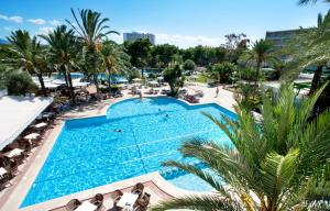 A view of the pool at Grupotel Gran Vista & Spa or nearby