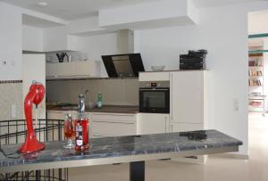 A kitchen or kitchenette at Apartments Nürnberg Zentrum nähe Burg Altstadt, Park