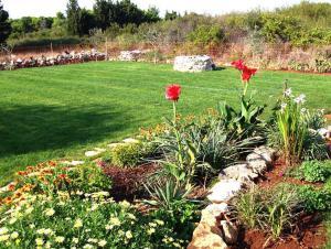 A garden outside Casa Riva