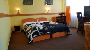 Номер в Hotel Morava