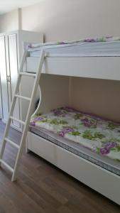 A bunk bed or bunk beds in a room at Hotel Margjeka