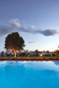 The swimming pool at or near Skiathos Princess