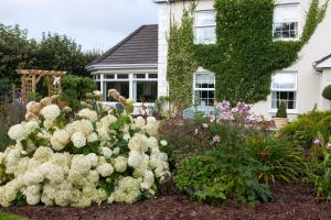 A garden outside Laburnum Lodge