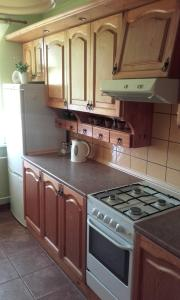 A kitchen or kitchenette at Apartament Rodzinny w Kaliszu