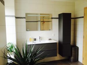 A bathroom at Meublés de Tourisme Heidelbeere