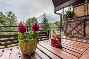 Patio lub wspólna przestrzeń na świeżym powietrzu w obiekcie Rent like home - Za Strugiem