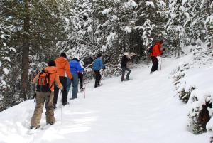 Bungalows Nou Camping en invierno