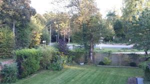A garden outside Studio Chantilly