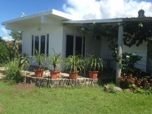 Patio o area all'aperto di Rodrigues Kite House