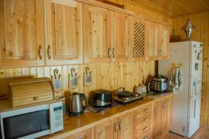 A kitchen or kitchenette at Guest House Suzirya Karpat