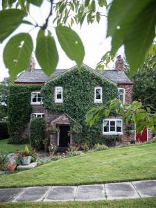 A garden outside Ash Farm Country House