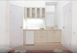 A kitchen or kitchenette at Apartment on Grecheskaya