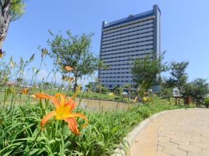 Um jardim em Hotel Rainha do Brasil