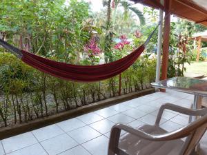 Terrasse ou espace extérieur de l'établissement Hotel El Colibri Rojo - Cabinas - Le Colibri Rouge