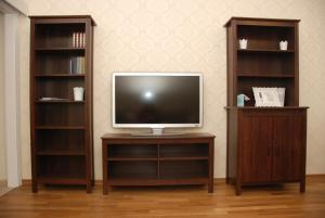 A television and/or entertainment centre at Peredelkino Apartment
