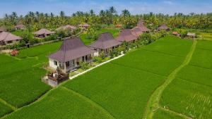 A bird's-eye view of Masia Villa Ubud