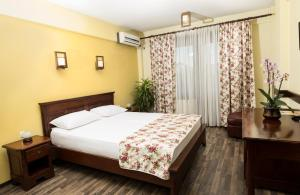 A room at Pensiunea Siva