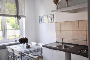 Kuchnia lub aneks kuchenny w obiekcie Apartament Rosa