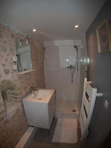 A bathroom at Petit gite a deux pas de l'etang