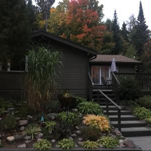 A garden outside Cloverleaf Cottages