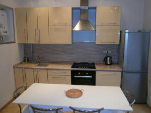 Кухня или мини-кухня в Leader NORD apartment on Arbat