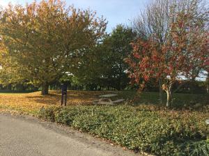 A garden outside Redwings Lodge Rutland