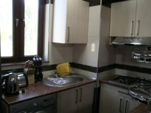 A cozinha ou cozinha compacta de Apartment on Tbilisi Avenue