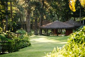 A garden outside Pousada Tucano Do Cuiabá
