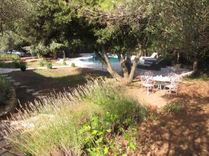 A garden outside Villa Andree