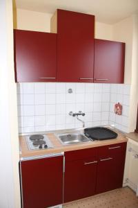 A kitchen or kitchenette at FeWo Bonn Sejour - Nähe UN-Campus u. WCCB
