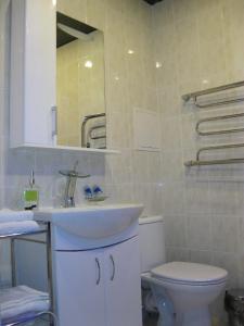 A bathroom at Apartments on Velizhskaya ulitsa