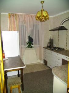 Кухня або міні-кухня у Apartment on Malinovskoho street 25