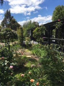 A garden outside Hilltop Too