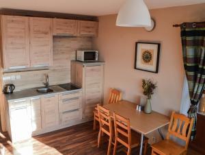 A kitchen or kitchenette at Cihlářka - Apartmány 309/208