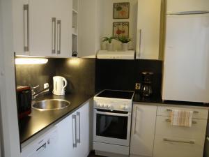 Majoituspaikan Asuntovuokraus Poimu keittiö tai keittotila