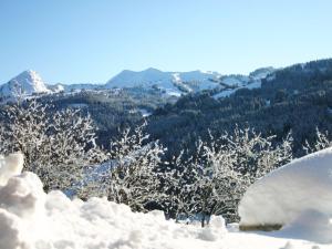 La Farandole Les Gets during the winter