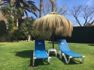 Jardín al aire libre en Olimar II
