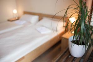 Ein Bett oder Betten in einem Zimmer der Unterkunft Hostel SLEPS
