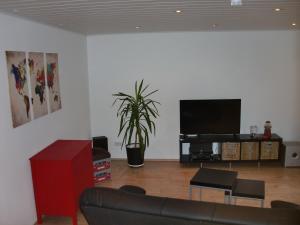 TV/Unterhaltungsangebot in der Unterkunft Ferienwohnung Super-Bude Ulmtal