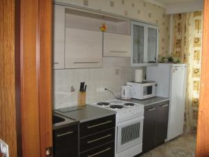 A kitchen or kitchenette at Apartment in Center on Lomonosova55