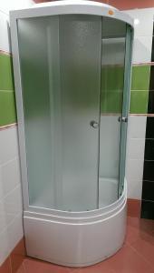 A bathroom at Motel Raduga